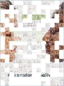 SelfieBox Mosaic progress